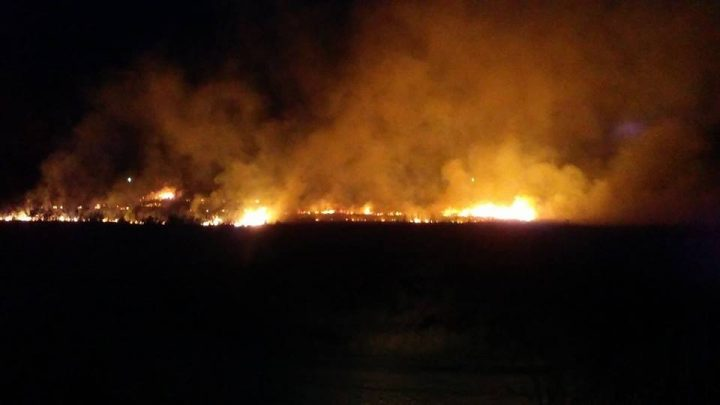 Okolina Lipovice gorela, pola sela gledalo gašenje požara
