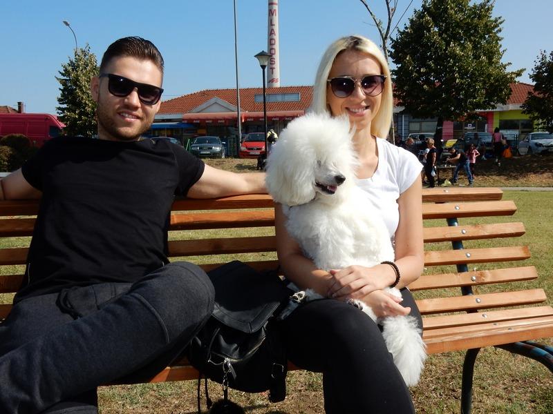Biraju se najlepši psi na međunarodnom takmičenju u Leskovcu