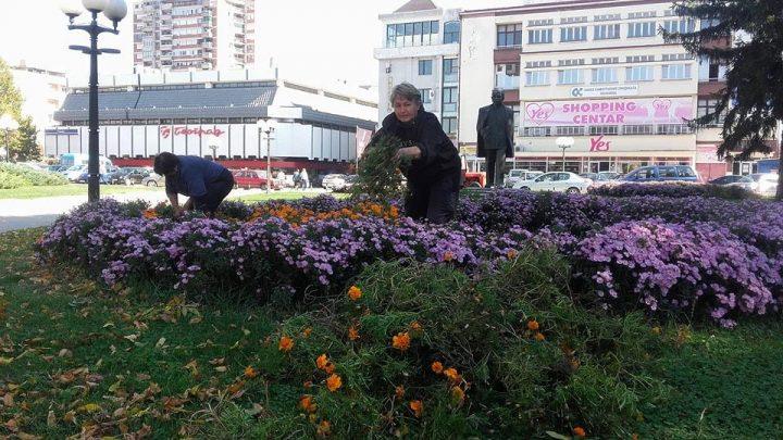 Počela jesenja sadnja, novi drvoredi u…