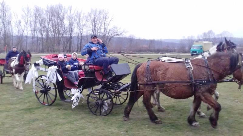 Todorova subota u Dobrotinu, priča o ljubavi prema konjima (FOTO)