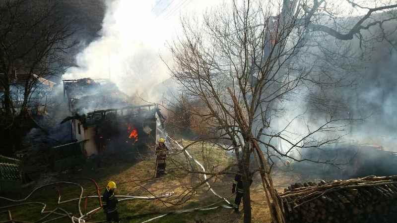 Bukti požar u Brezovici, gašenje otežava vetar