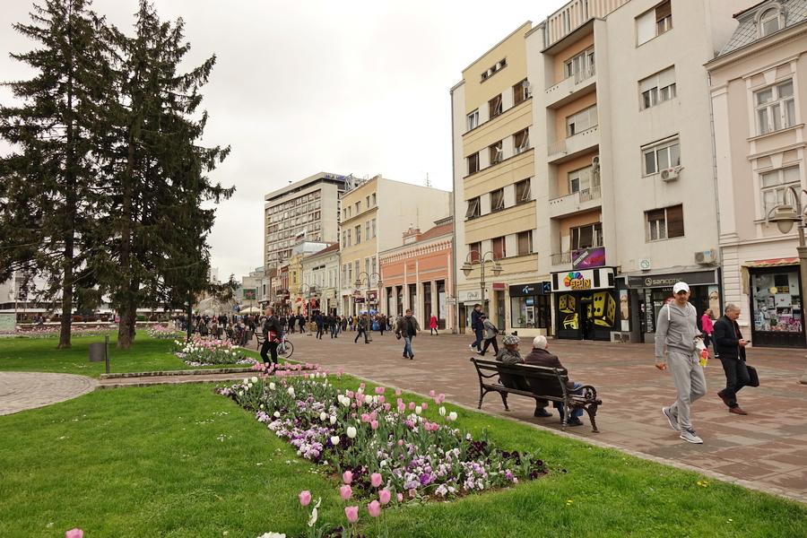 Veselji: Niš je bio naseljen Albancima, dok ih Srbi nisu proterali