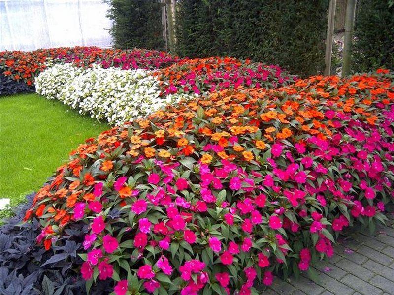 Besplatna radionica o proizvodnji cveća za nezaposlene žene