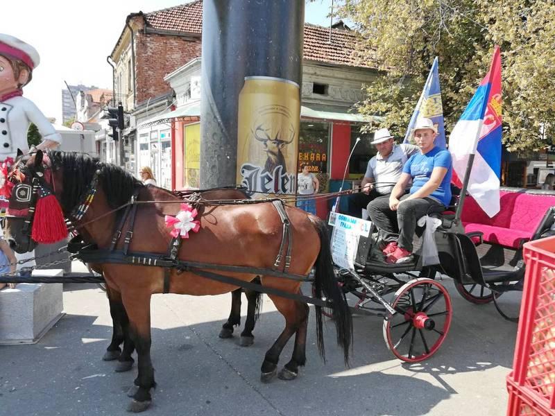 Fijaker s konjima kruži oko Roštiljijade, atrakcija za turiste i decu