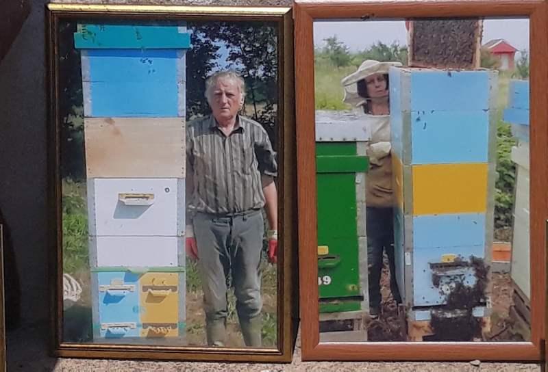 Cela porodica živi od proizvodnje meda