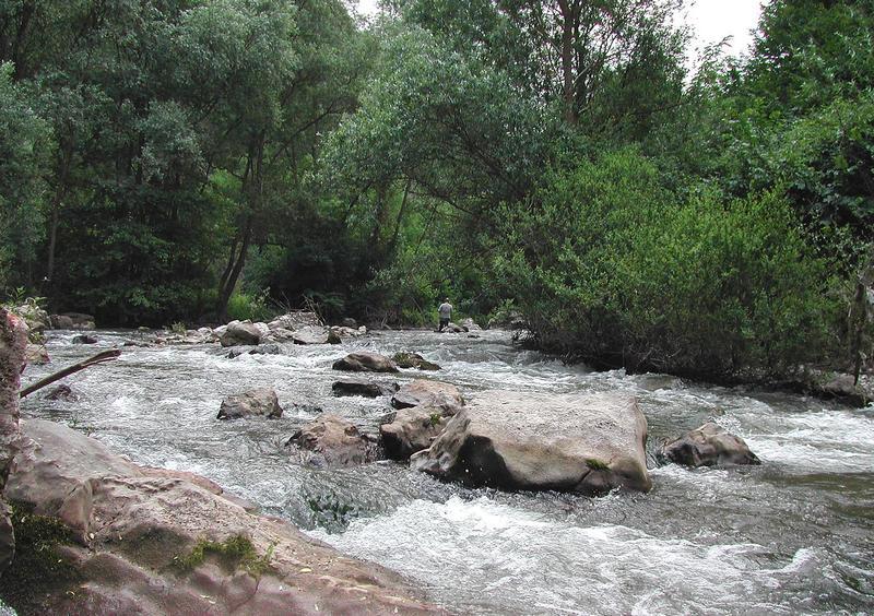 Gradovi i opštine sliva reke Južne Morave udruženim snagama za veća ulaganja u izgradnju zaštitnih bedema