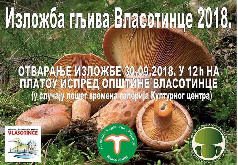Dani gljiva u Vlasotincu (PROGRAM)