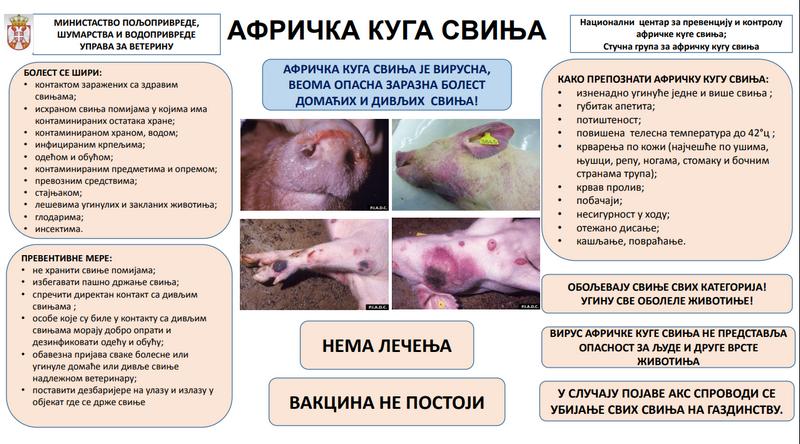 Formiran Regionalni centar za kontrolu afričke kuge kod svinja