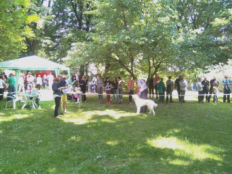 Sutra dezinsekcija parka zbog izložbe pasa