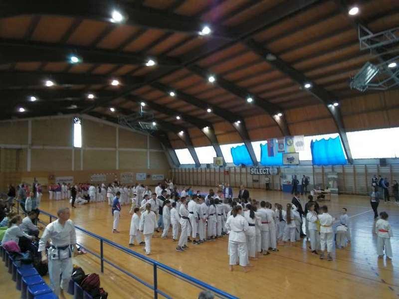 Karatisti Feniksa osvojili 20 zlatnih medalja