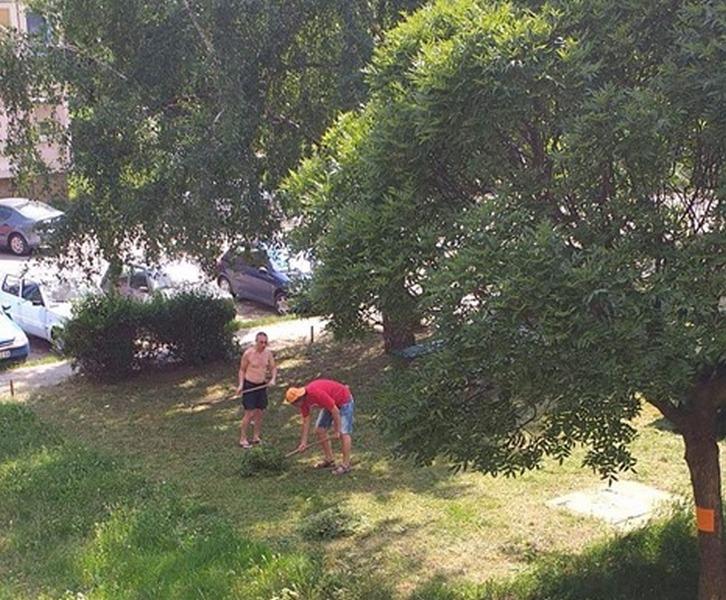 Meštani Dubočice kosili travu uz muziku i performans