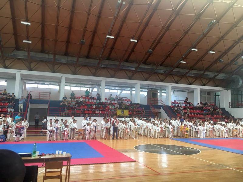 Međunarodni karate turnir održan u Medveđi