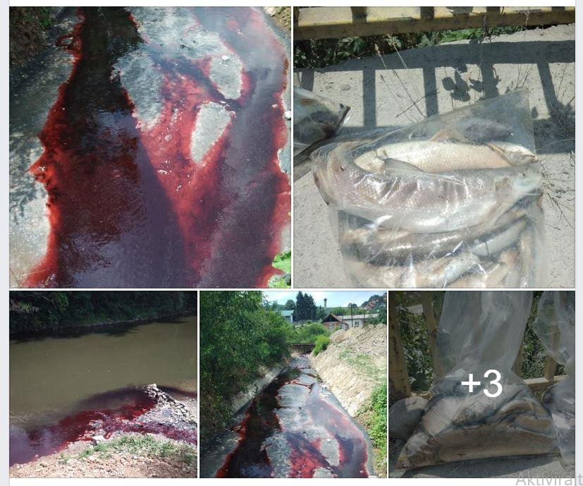 Pomor riba i u Južnoj Moravi, pocrvenela kao krv od nepoznate materije