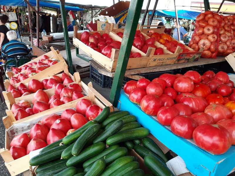 Zlatna godina za leskovačke povrtare, paradajz se masovno izvozi, cene rastu