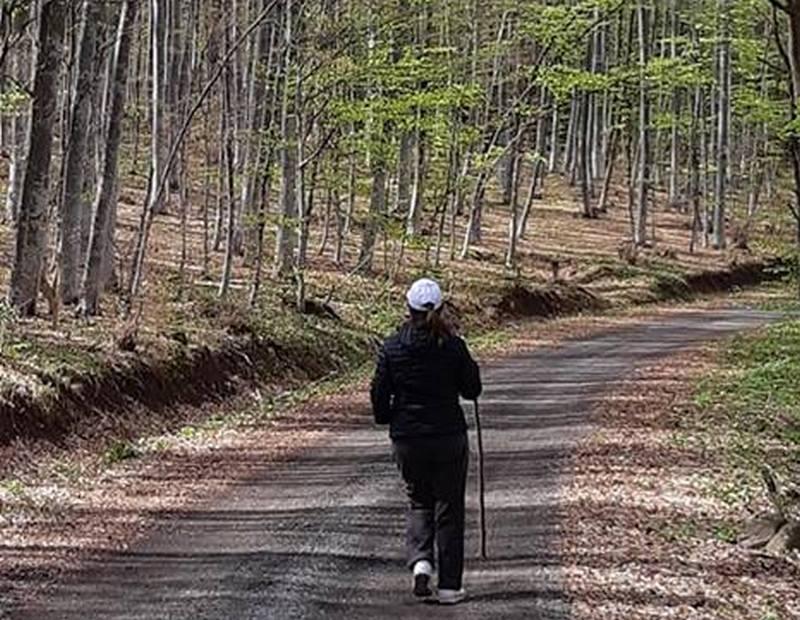 Izazov za iskusne planinare, uspon na Rtanj severnom stranom planine