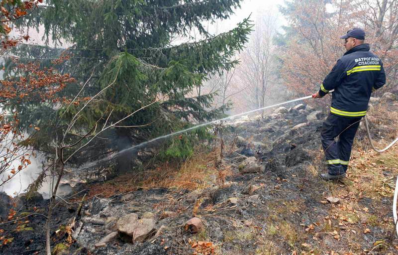 Požari na Suvoj planini i pored puta Niš–Babušnica pod kontrolom