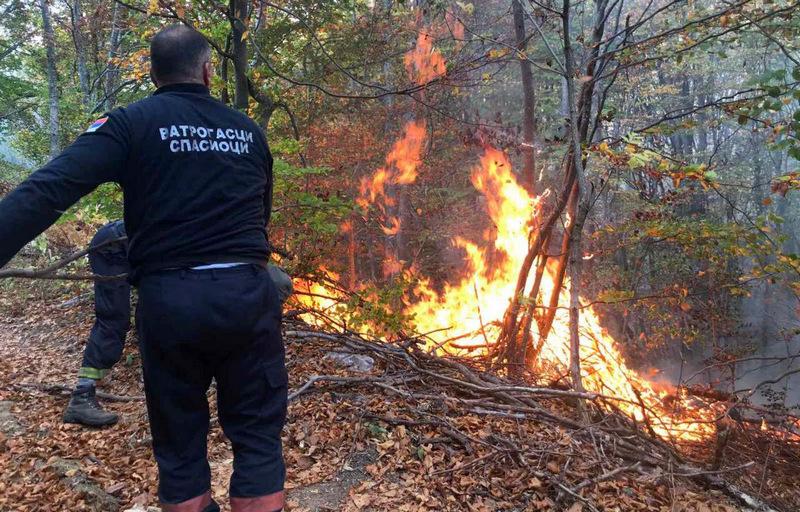 Zaustavljeno širenje požara na Staroj planini, dežura se i dalje