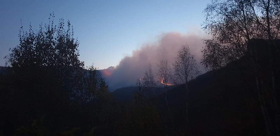 Veliki požar na Staroj planini gasi 55 vatrogasaca iz Leskovca, Niša, Pirota… Treba im helikopter – (VIDEO)