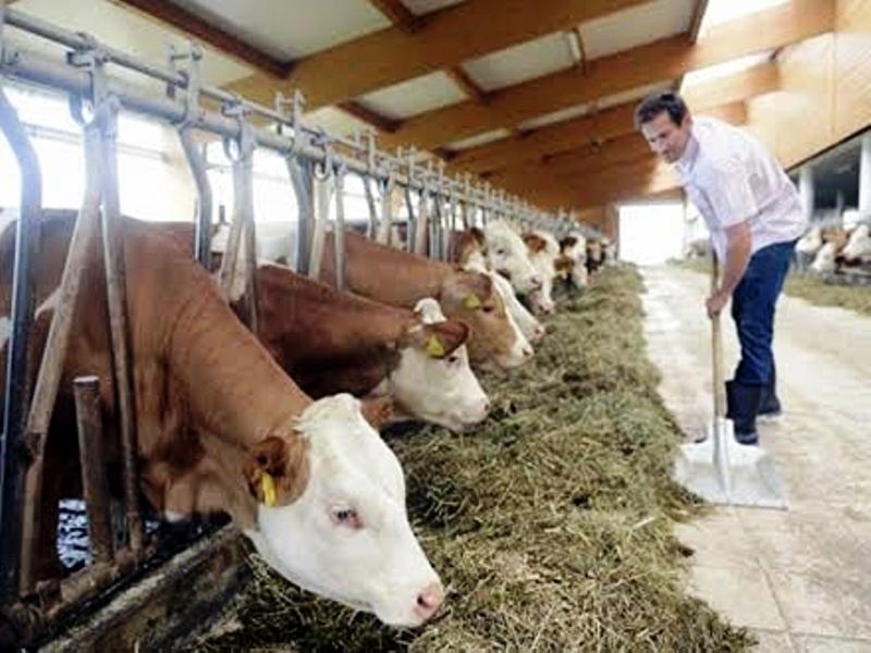 Studijsko putovanje za poljoprivrednike