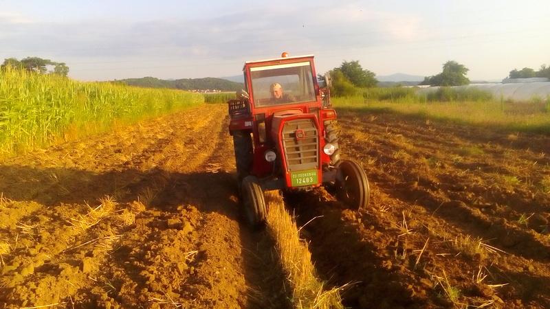 Setva pšenice u Jablaničkom okrugu kasni, obaviće se van optimalnih rokova