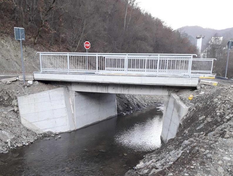 Srpkinja iz Amerike Pavlininim mostom spojila dve obale za 500 meštana iz 7 sela