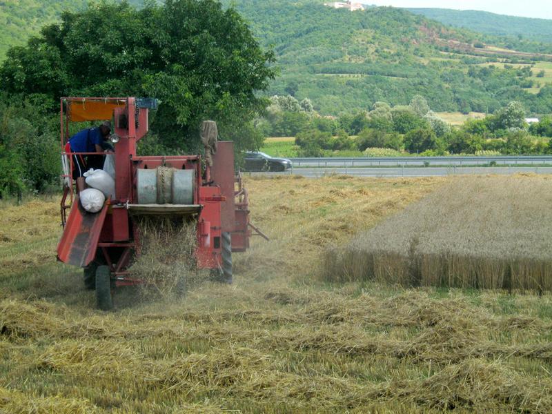 U budžetu više novca za poljoprivredu