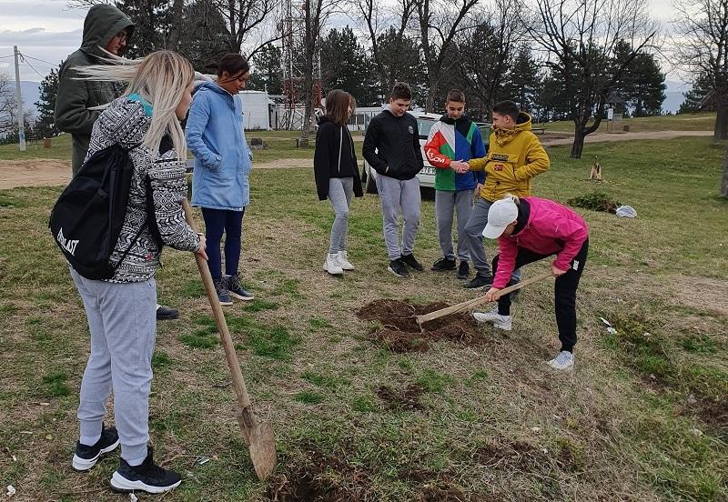Mladi Leskovčani zasadili drveće na Hisaru