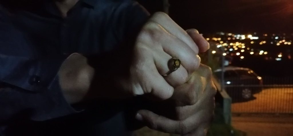 Ljubav u doba korone: Kako je prsten star nekoliko generacija srušio policijski čas – VIDEO