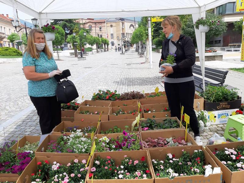 Vranjanke i u doba korone kupuju cveće za svoje bašte