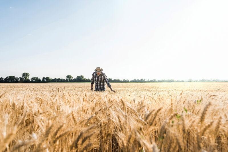 Dunav osiguranje: Popusti za poljoprivrednike i u vanrednom stanju