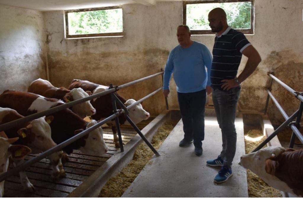 Za stočare pomoć od 3.000 dinara po grlu