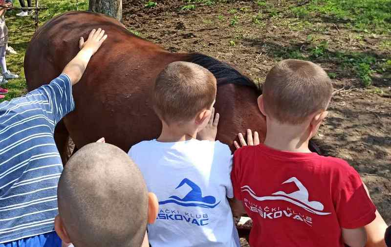 Druženje s decom nastavljeno i u aero i konjičkom klubu