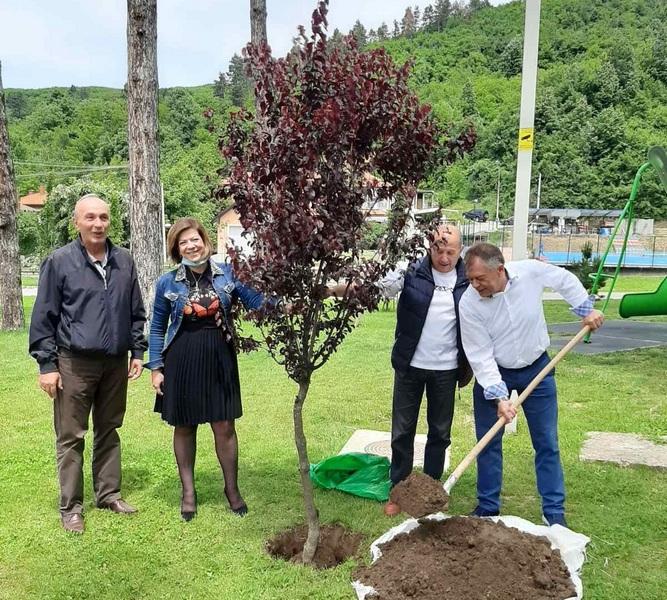 Sađenjem stabla obeležen Dan zaštite životne sredine u renoviranom parku u Surdulici