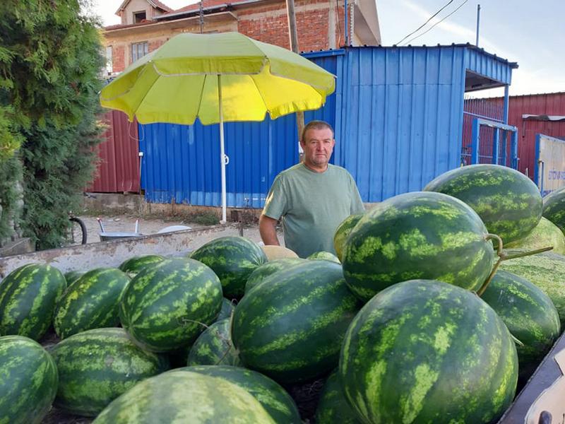 Bostandžija Slađan punih 25 godina prodaje bostan na istom mestu