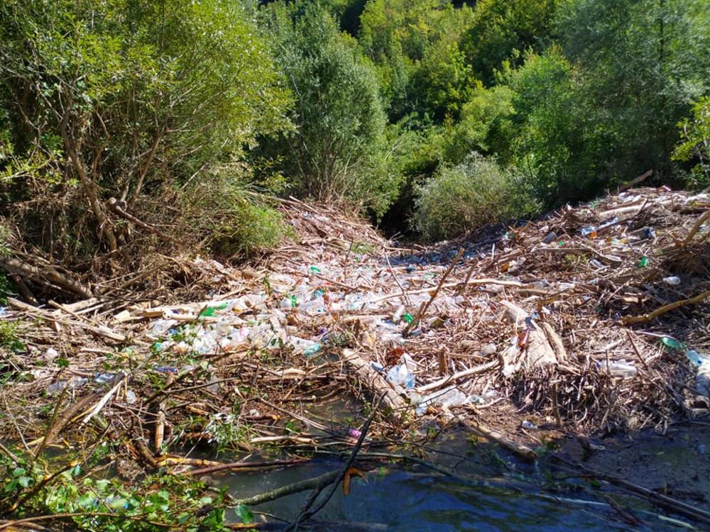 Tužan prizor sa juga Srbije: Reka prepuna smeća