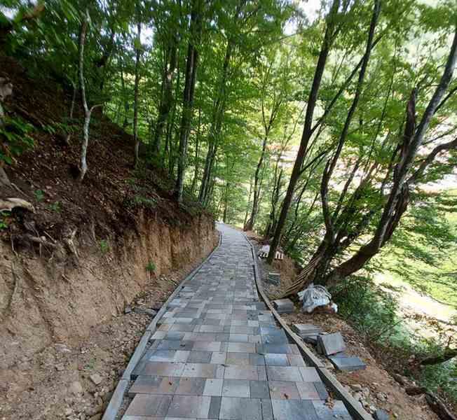 Staza zdravlja u Sijarinskoj Banji ili šetnja kroz stoletne šume
