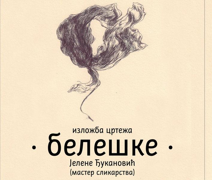 """Izložba crteža """"Beleške"""" od sutra u leskovačkoj Biblioteci"""