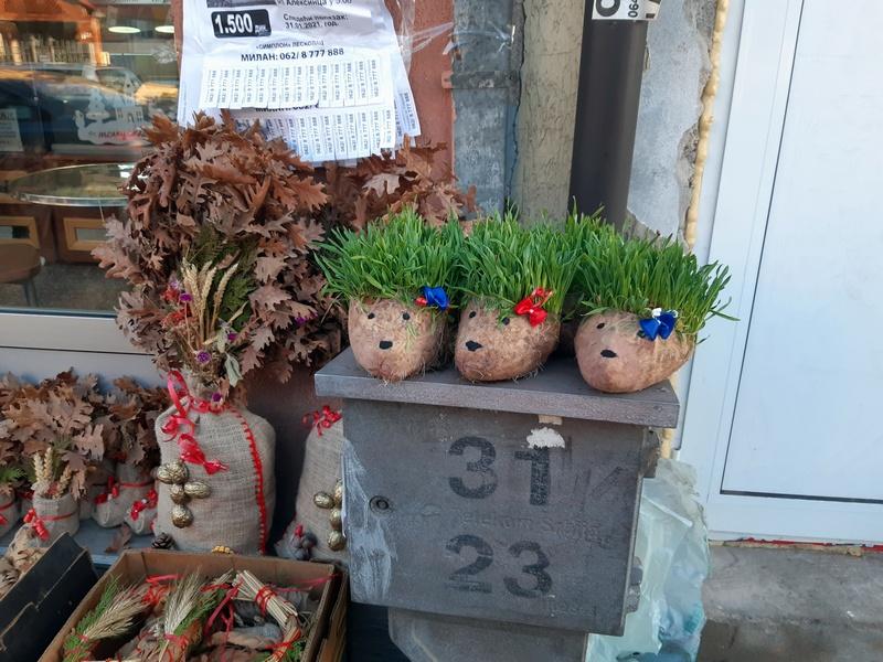 Sve za Badnje veče na Niškoj ulici u Leskovcu