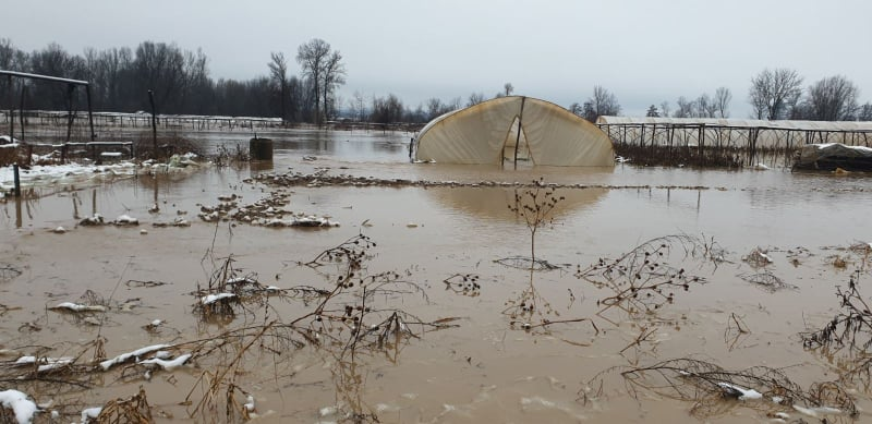 Poplave: Alarmantno i u Vladičinom Hanu