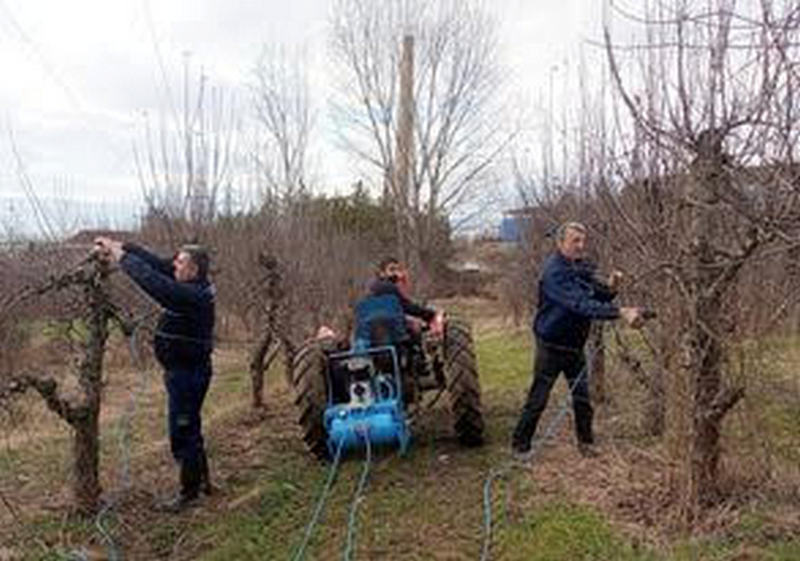 U Poljoprivredno-šumarskoj školi počeli sa rezidbom voćnjaka