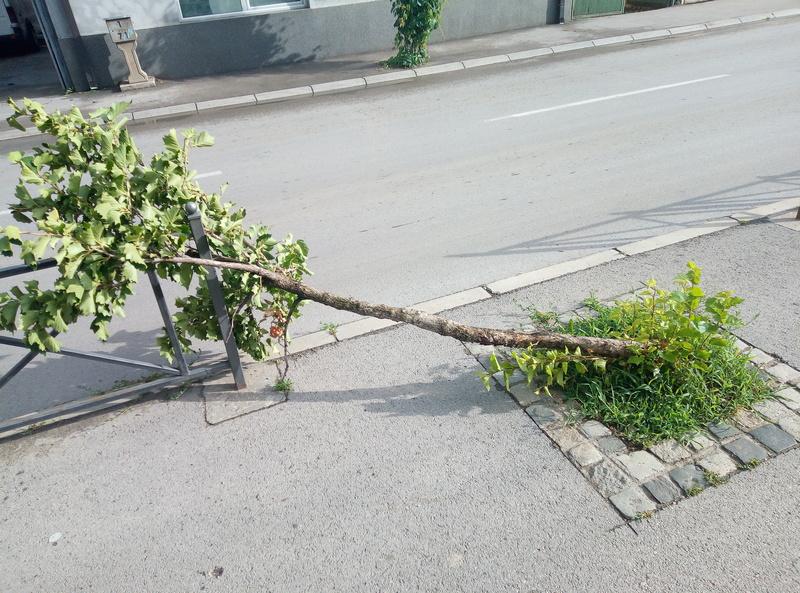 Strelci razbili gradonosne oblake iznad Leskovca, mestimična šteta od olujnog vetra