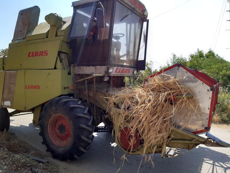 U Jablaničkom okrugu žetva pšenice u punom jeku, prinosi po hektaru veći od 5 tona