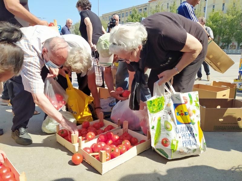 Leskovački paradajz najtraženiji na beogradskim pijacama