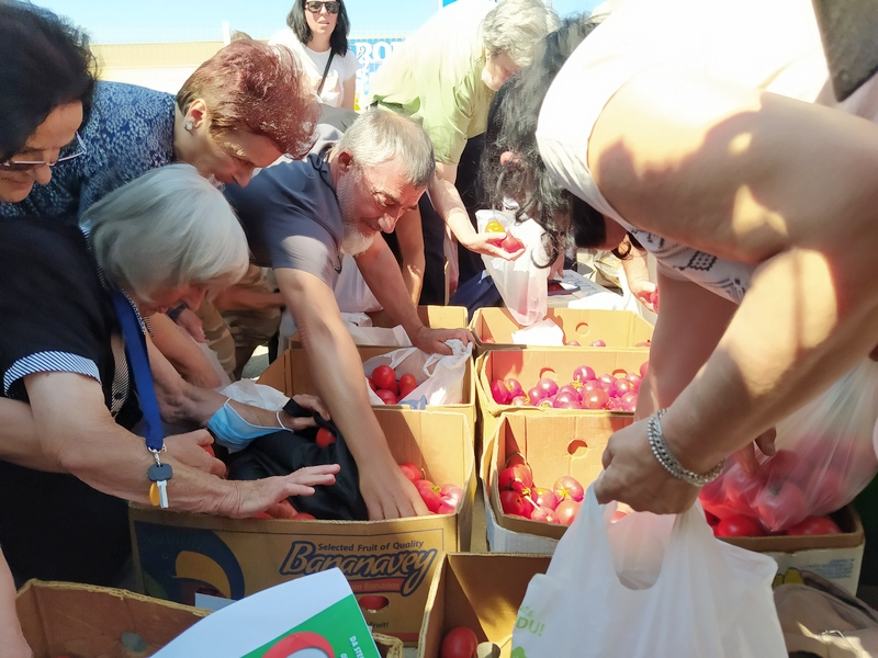 U sredu opet besplatna podela paradajza, poljoprivrednici traže da dođe Vučić